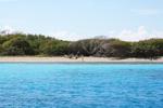 Saline Island - Yachtcharter Schweden, Mitsegeln