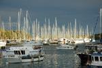 Veruda - Yachtcharter Schweden, Mitsegeln Schweden