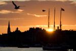 Stockholm Sunset - Yachtcharter Schweden & Mitsegeln Stockholm, Bareboat Göteborg