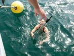 Rettungsaktion Bootshaken - Yachtcharter Schweden, Mitsegeln Schweden