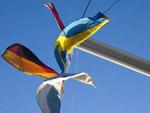 Flaggen gehisst - Yachtcharter Schweden, Yachtcharter Göteborg, Mitsegeln Stockholm