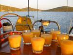 Coctails - Yachtcharter Schweden, Mitsegeln Schweden