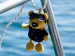 Sunshine - Yachtcharter Schweden, Mitsegeln Schweden